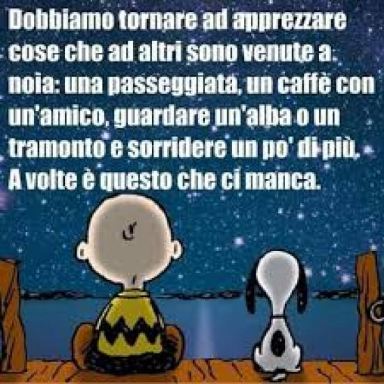 Immagine da Pinterest con Snoopy e Charlie Brown