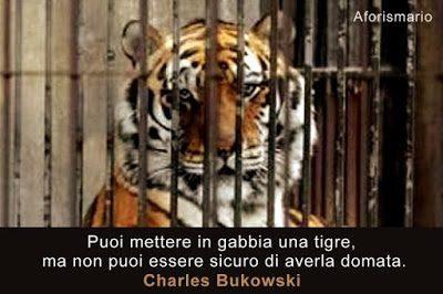 Aforisma della tigre di Charles Bukowski