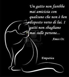 Frase sul gatto di Amos Oz