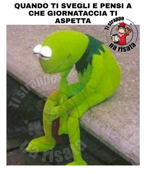 Kermit dei Muppets pensa a che giornataccia lo aspetta