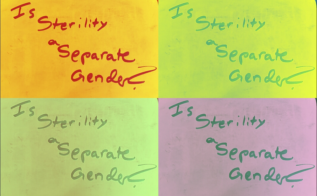 Is Infertility A Separate Gender for the Rabbis? A Look at the אילונית and סריס [Talmud Tuesday]