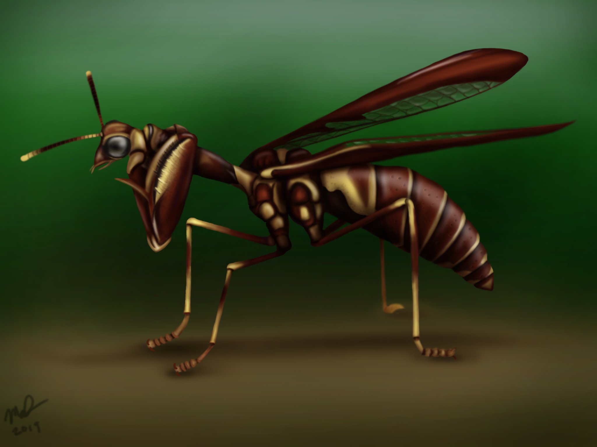 Brown Mantidfly