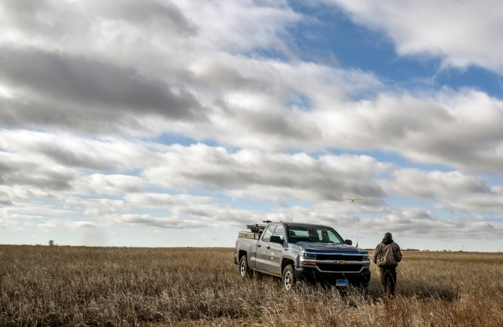 Brad Baumgartner, GF&P wildlife damage specialist, heads back to his truck after locating a dead coyote that was shot and killed by gunner Blake Bappe from the back of a plane flown by pilot Tony DeCino flies over to another field to check for more coyotes east of Howard on Thursday morning. (Matt Gade/Republic)