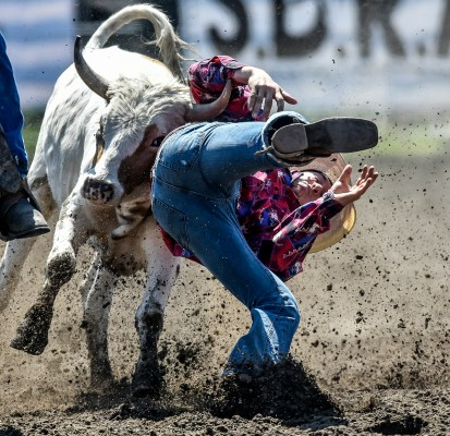 Brent Belkham, of Blunt, can't hang on to his steer during the steer wrestling portion of the Wessington Springs Foothills Rodeo on Sunday, May 29 at the Jerauld County 4-H arena.