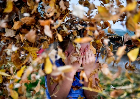 Trudie Hofer (8) covers her faces as leaves are thrown at her by one of her sister while playing in the front yard on Monday, Oct. 17 in Mitchell.