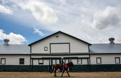 A horse is brought up from its pen to enter the arena over to the paddock to be saddled and shown off to betters before competing in the Pari-Mutual Horse Races at the Brown County Fairgrounds on Sunday in Aberdeen.
