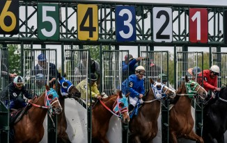 Horses race out of the starting gates for the third race during the Pari-Mutual Horse Races at the Brown County Fairgrounds on Sunday in Aberdeen.