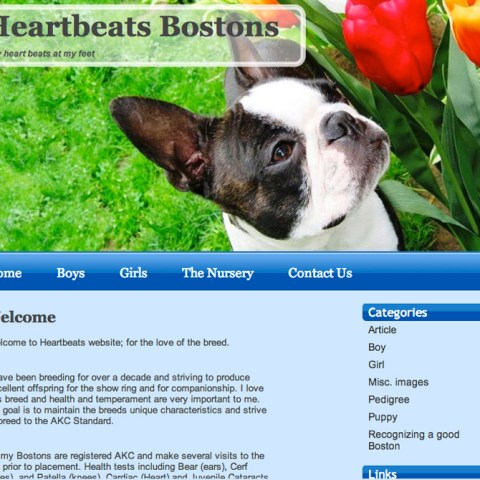 Heartbeats Bostons
