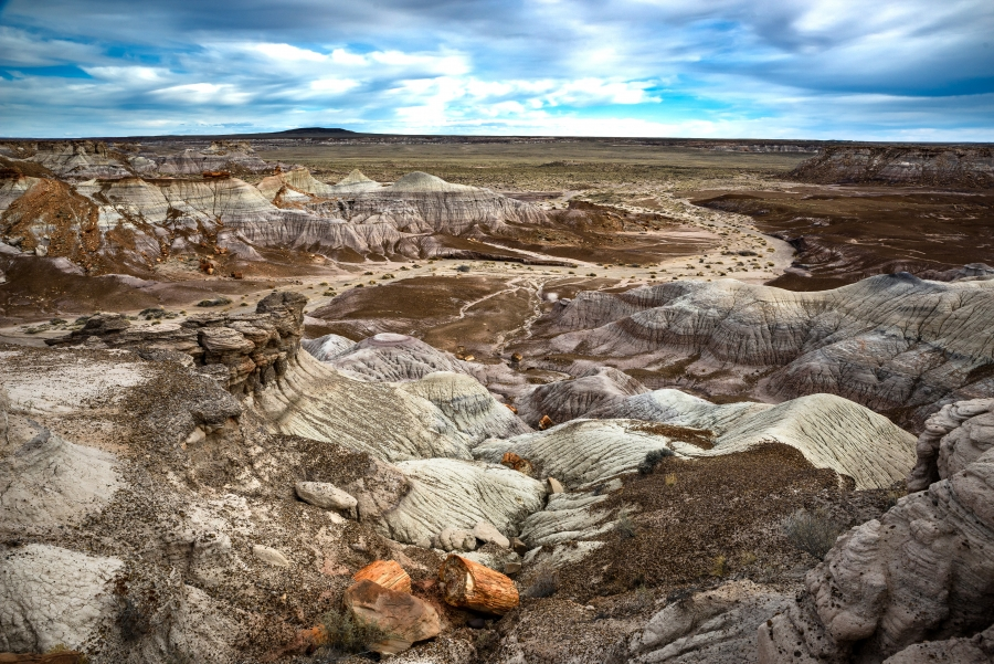 Photographing The Petrified Forest