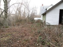 yard work 005