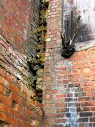 Grafitti and brick 08.04.14 - 3