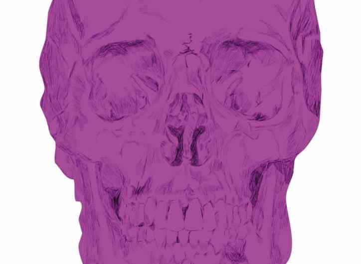 Big pink skull beautiful drawing print goth pop