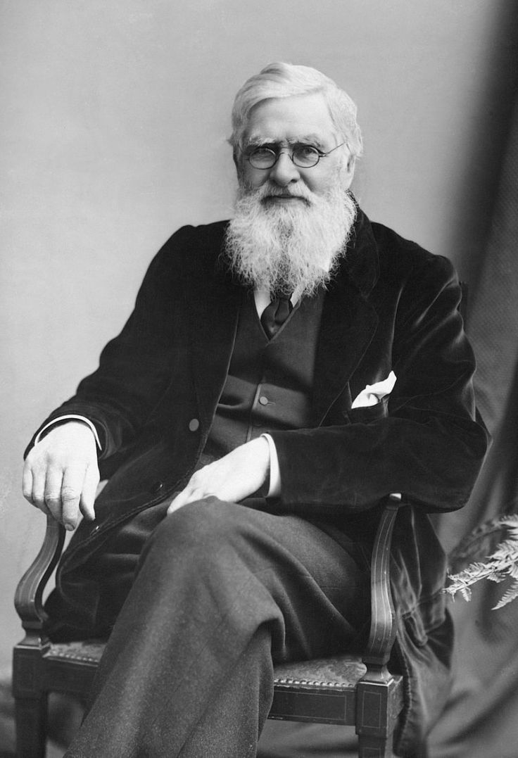 Alfred Russel Wallace (Alamy)