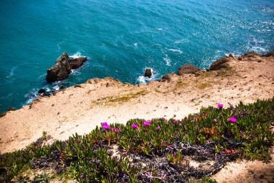 Travel_California-23
