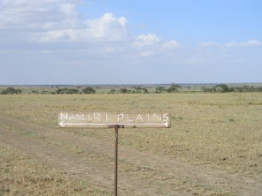 Namiri Plains, one of my favourite places ever.
