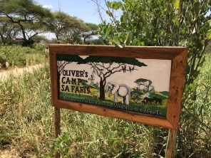 First rest stop, Oliver's Camp in Tarangire National Park.