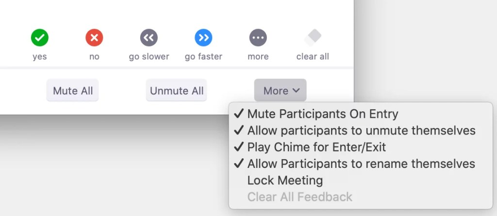 Screenshot of a Zoom meeting - Participants window - More options