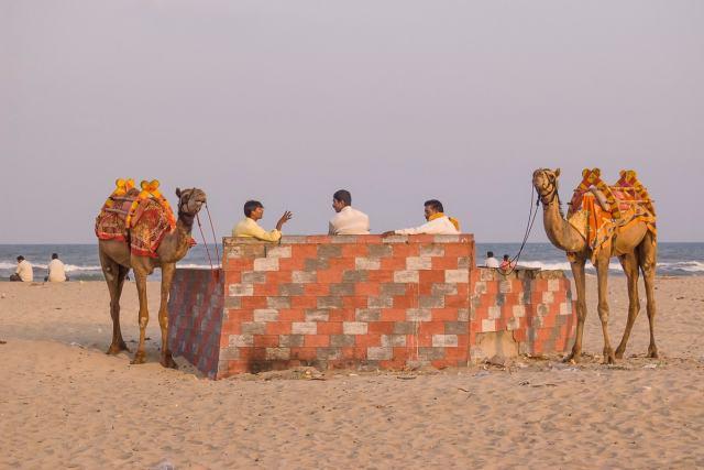 Puducherry, India beach with camel rides