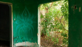Urban exploring in Cozumel, Mexico was really interesting and fun, I also captured some unique murals and colorful street photography.