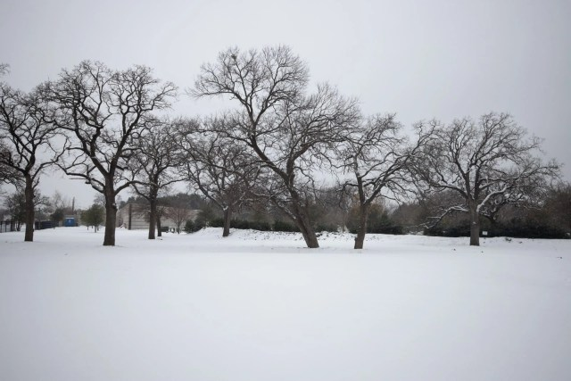Park completely blanketed with pristine snow