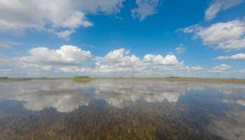 Florida Everglades landscape reflection of the sky
