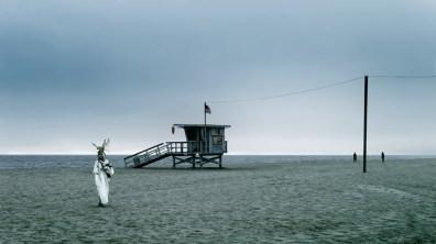 Venice Beach, 2011