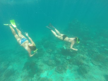 Exploring The Shallow Reefs
