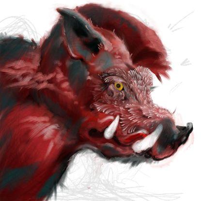 boar3