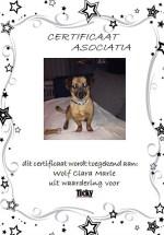 Adoptie-Ticky