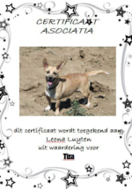 Adoptie-Tiza