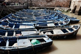 two lines of blue rowboats in a little harbor