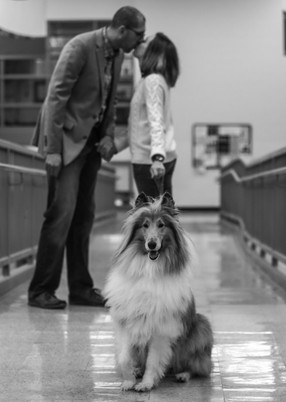 Couple walk with their dog during Edinboro PA engagement session