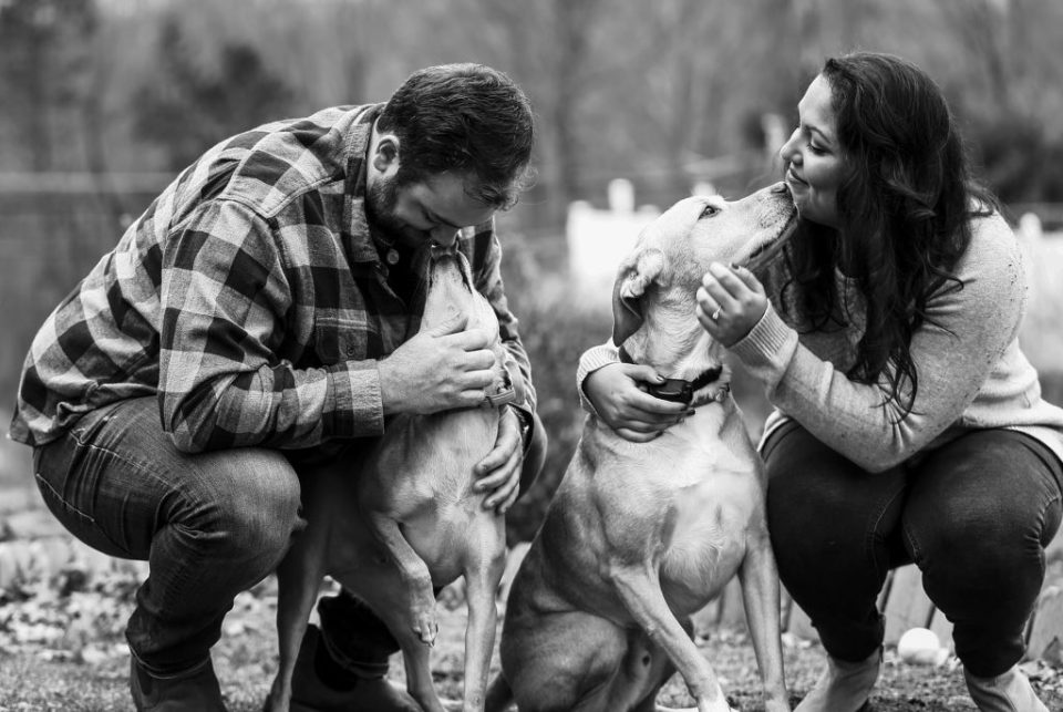 Couple plays with their dogs during winter engagement photos at their home