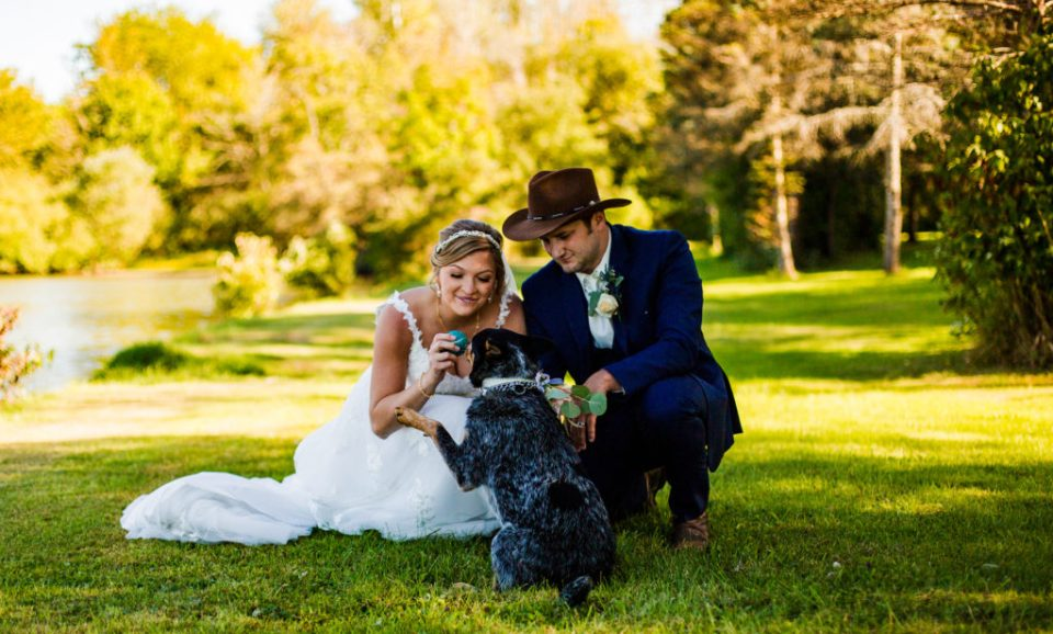 Bride and groom play with their dog on family farm in Waterford PA