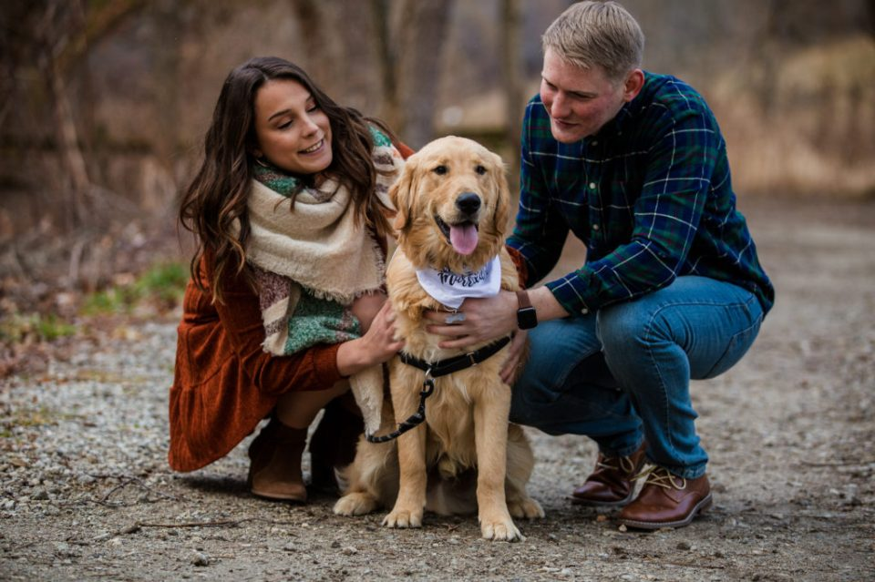 Engaged couple pose with their golden retriever puppy at Frontier Park