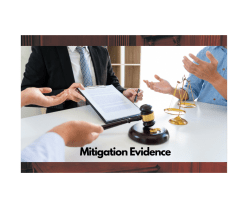 Mitigation Evidence