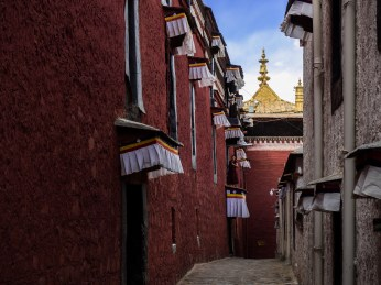 A nun in the alley between the lovely Tibetan buildings
