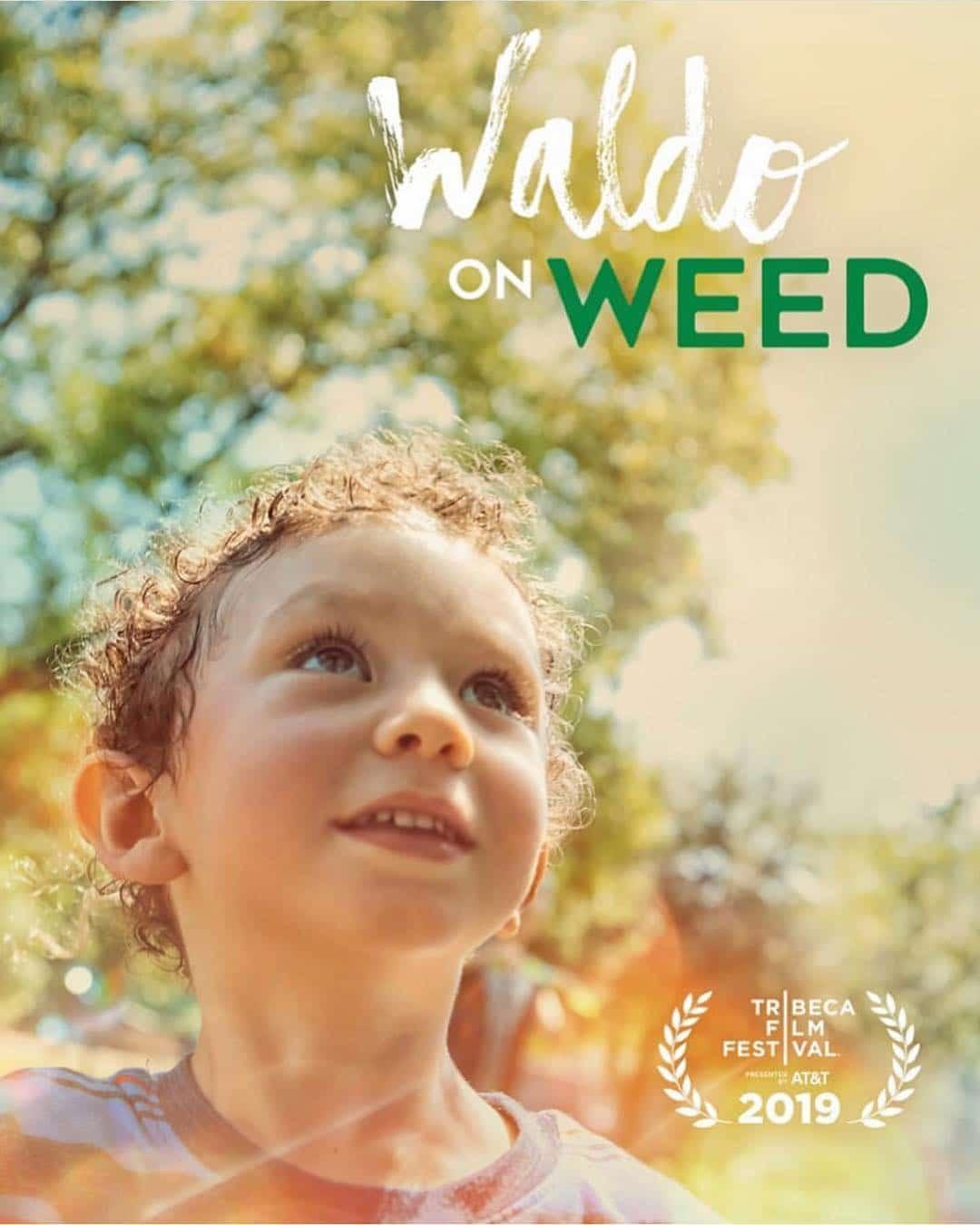 Waldo on Weed with Matt Rize