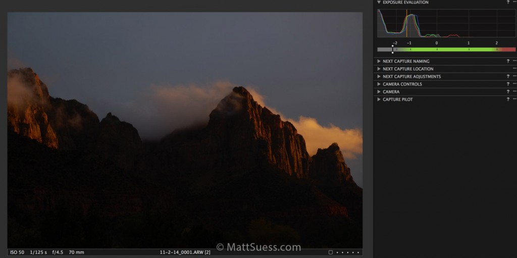Here is how the original RAW file looked in Capture One Pro prior to enhancement.
