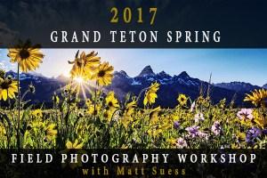 2017-Teton-Spring-ad-600x400px copy copy