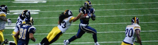 cropped-troy-polamalu-by-karen-blaha1.jpg
