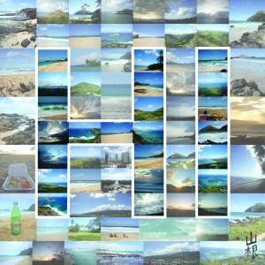 HI Collage