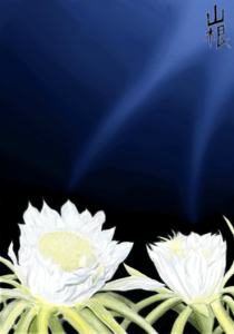 Night Blooming Cerius