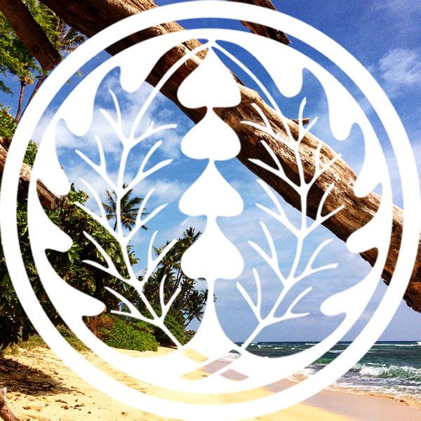 Beach Mon