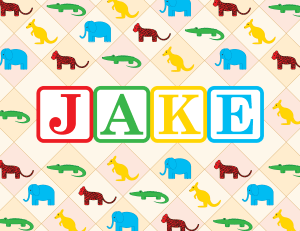 Jake's Design, 1st Birthday