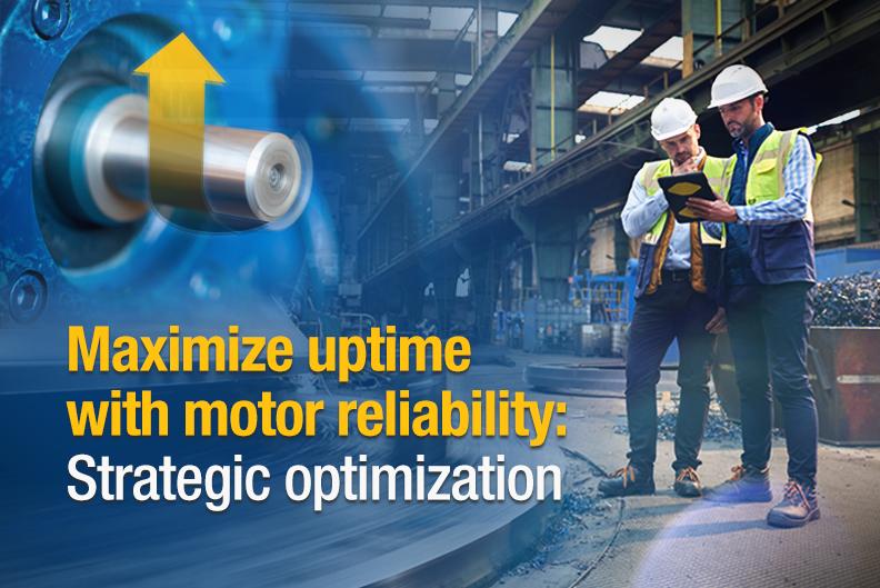Motor Reliability Visual Theme Maintenance Manager