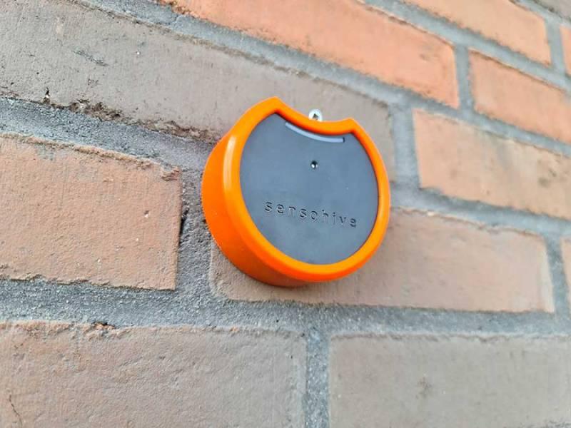 Orbit 3 in Orange Silicon