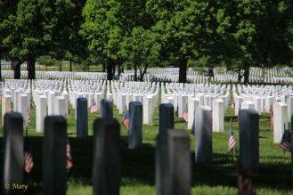 Arlington Memorial Cemetery