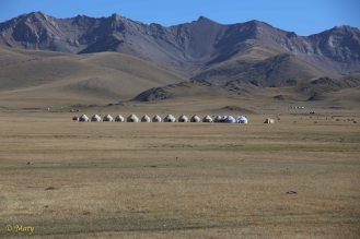 The yurt hotel!