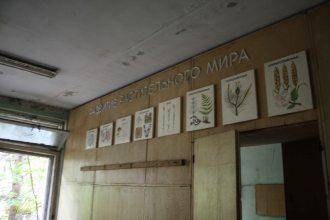 elementary school - biology room - city of Pripyat
